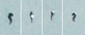 Seahorse-Shaped UFO Shines Over Belfast (VIDEO)